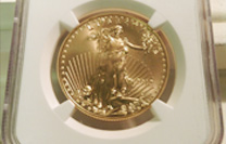 1 Piece MS70 1 ounce gold eagle